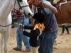 Hunter Valley attends a Fiesta Farm horse show