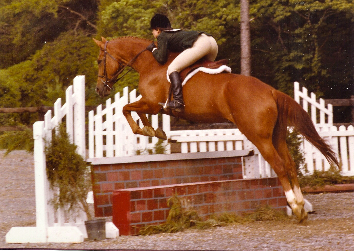 Autumn Chant and Michelle Breakbill Fiesta Farm horse show 1982