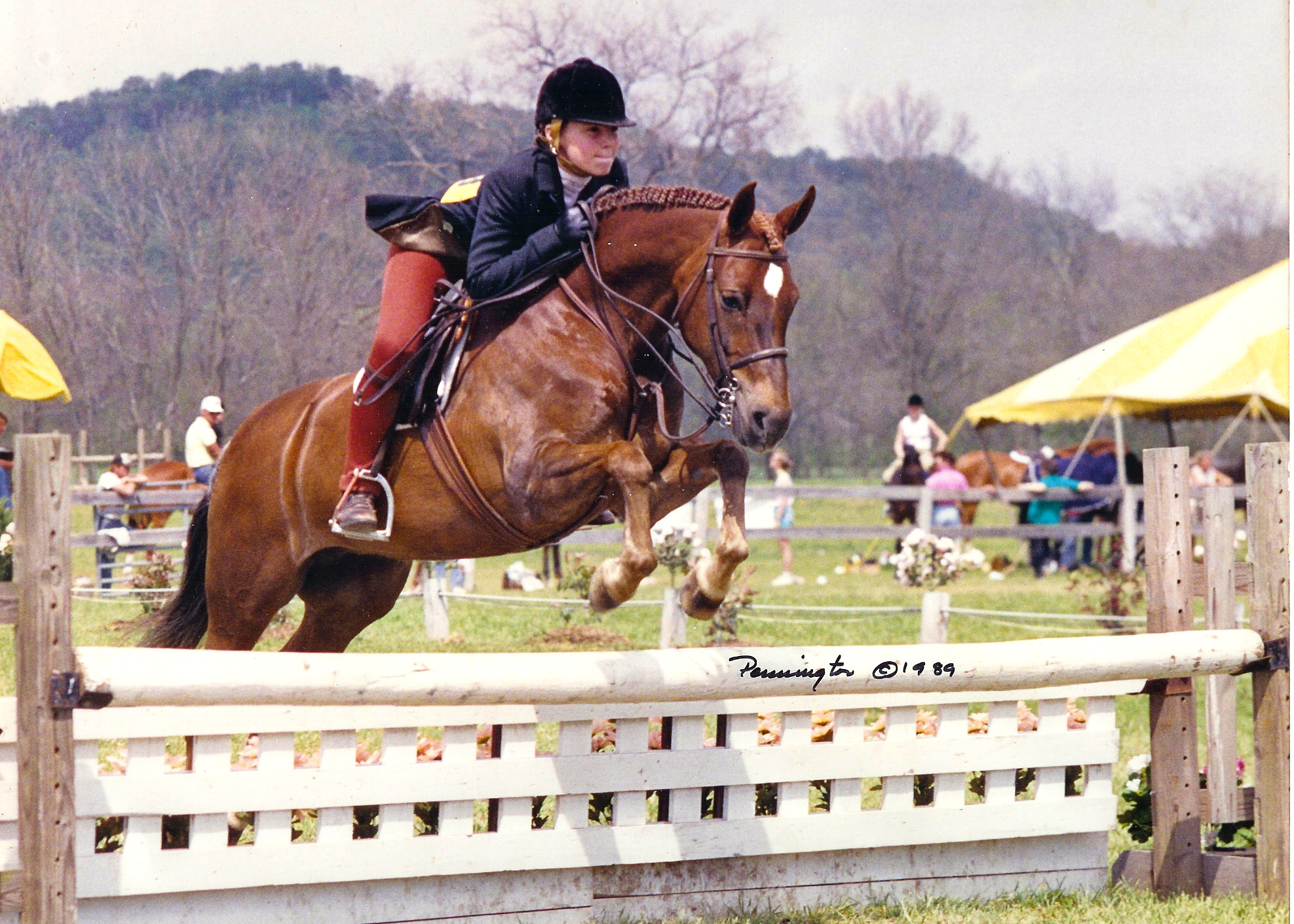 Fiesta Fanfare & Rachel Anderson (Oaks) at Brownland Farm in 1989