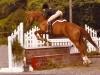 Autumn Chant and Michelle Breakbill Fiesta Farm horse show 1982