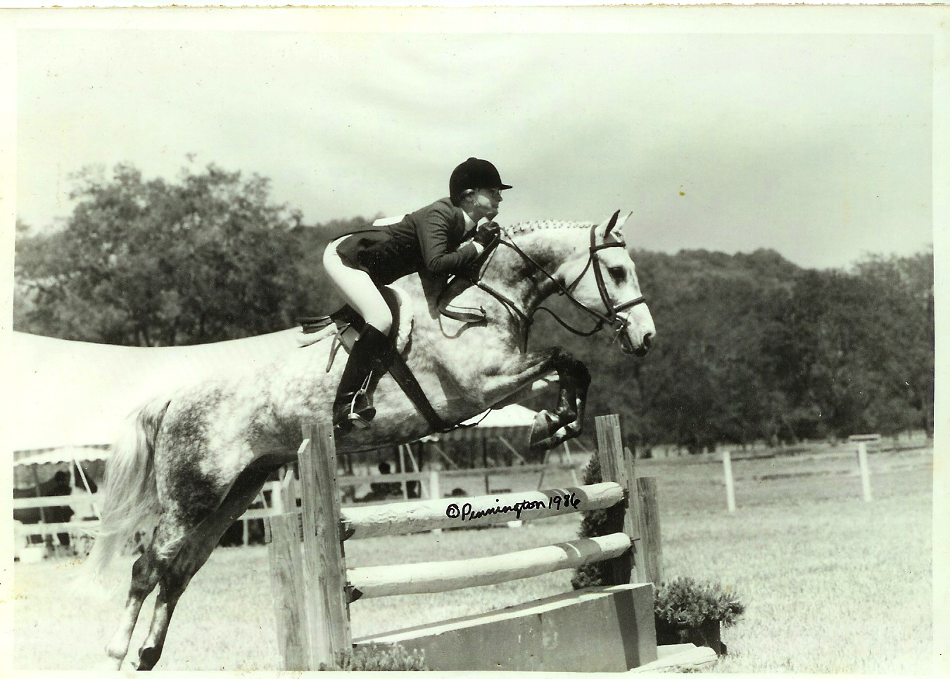 Webster & Molly Ashe showing at Brownland Farm in the large pony division in 1986