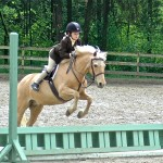 Lemon Drop showing in the Beginner Rider Hunter circa 2005.