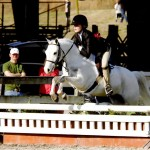 Howie Do It & H. Taylor, champion in the small ponies, RMI 2013.