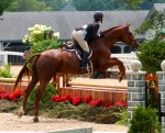 Maredith D. & Felix showing in the younger Adult Hunters