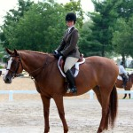 i-Candy & Cassie D. Showing in the Children's Hunter KY Summer Classic
